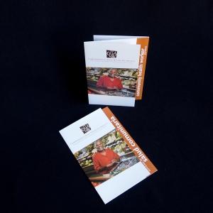 Bilingual CLUES brochure