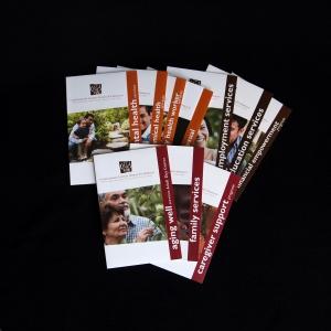All CLUES brochures