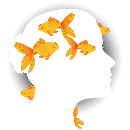 A white silhouette of a face against a dark gray radiating to white background, while in the foreground and background, happify goldfish swim.