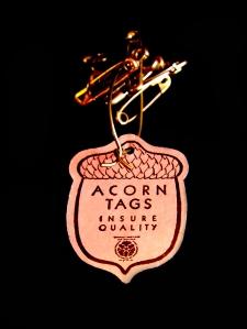 acorn pins 02